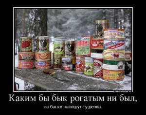 4273425_kakim-byi-byik-rogatyim-ne-byil.thumbnail.jpg